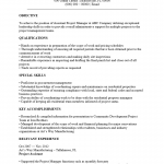 Assistant Project Manager Resume Template