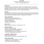 Customer Service Sales Resume Template