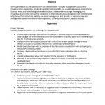 Infrastructure Project Manager Resume Template
