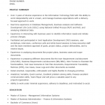 Junior Business Analyst Resume Template