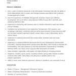 Junior Business Analyst Resume Template