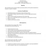 Labor and Delivery Nurse Resume Template