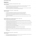 Senior Accounting Resume Template