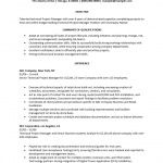 Technical Project Manager Resume Template