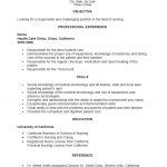 New (Entry Level) Nurse Resume Template