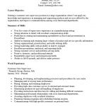 Professional Customer Service Resume Template