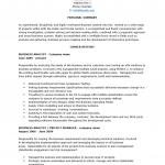 Senior Business Analyst Resume Template