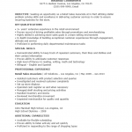 Professional Sales Associate Resume Template